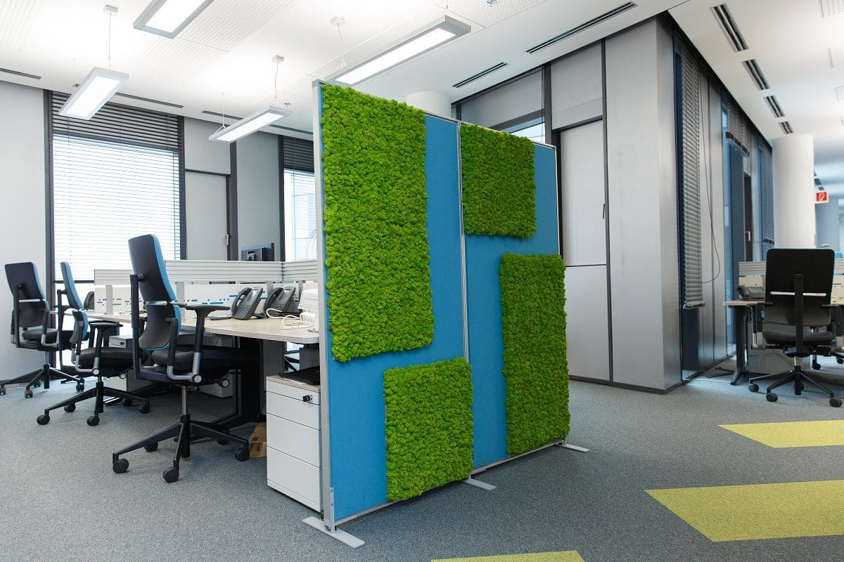 machové steny kancelária