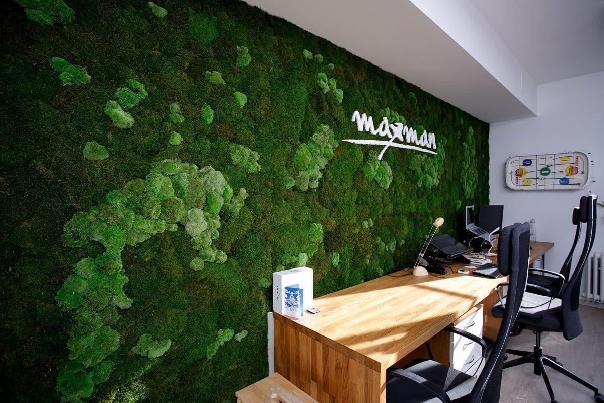 zelena stena z machu