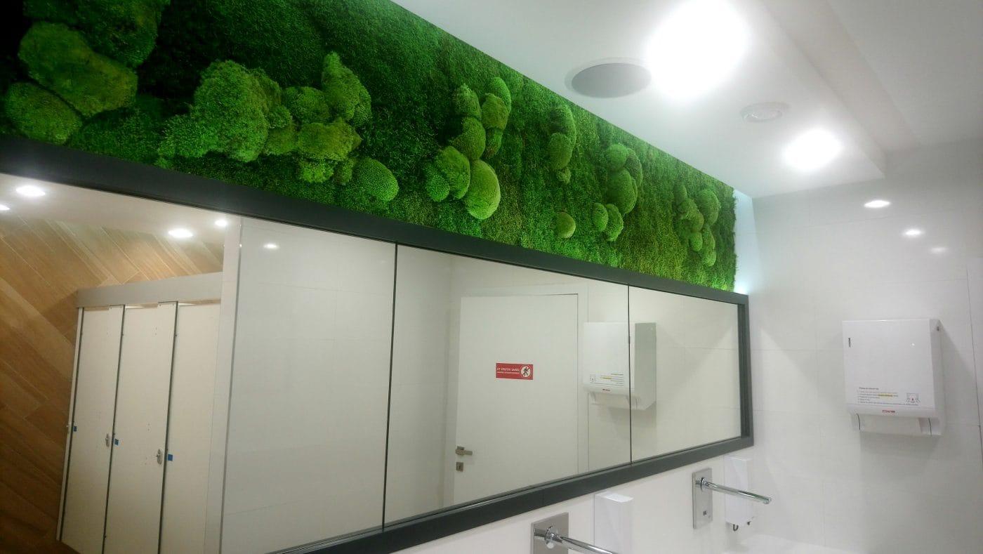 machova stena na wc