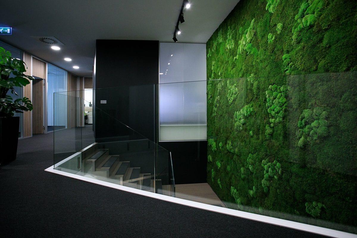 stena z machu do firmy