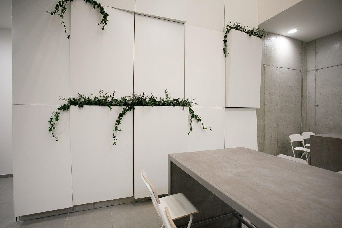 stena s rastlinami