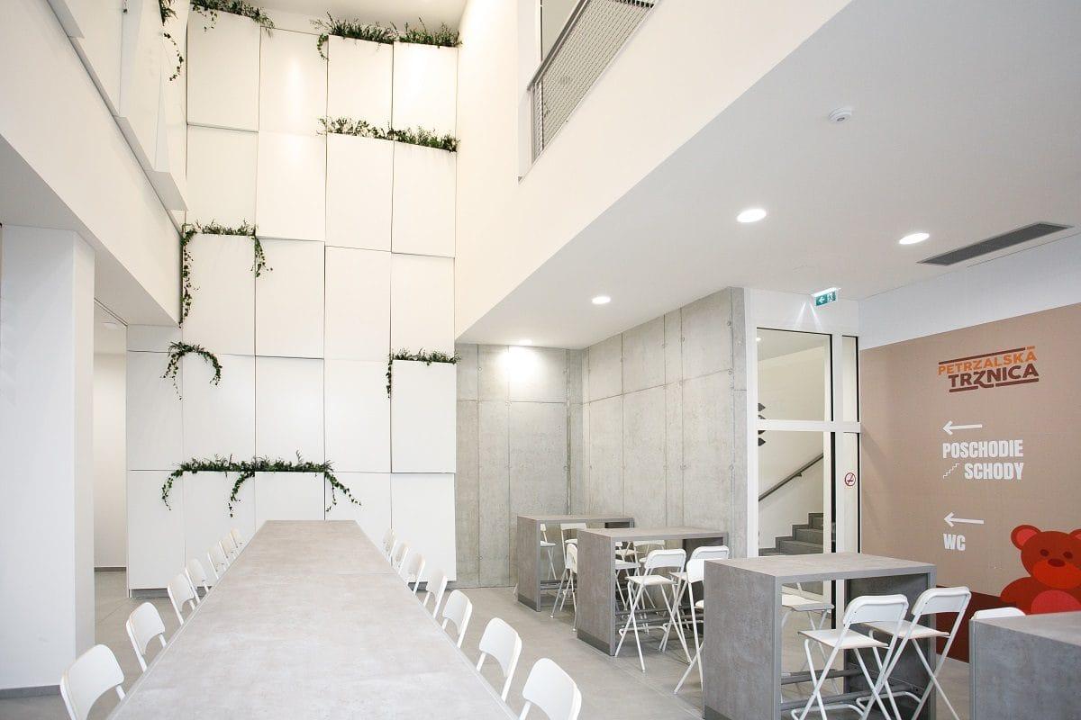 stena s rastlinou